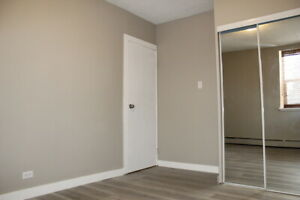 Downtown Apartment For Rent | 1424 Victoria Ave