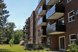 **1 Bedroom Apartment for Rent in Welland near Niagara College**