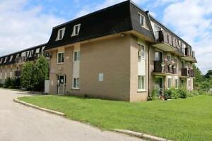 Guelph Kijiji Rooms For Rent