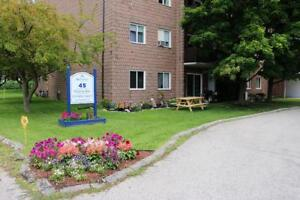 UTILITIES INCL! 2 Bedroom Corner Apartment for Rent in Ridgetown