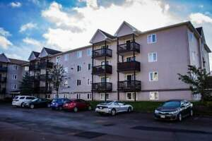 378 / 380 Gauvin Road - 2 Bedroom Apartment for Rent