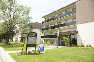 3894 Bathurst Street - 1 Bedroom Apartment for Rent
