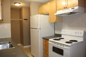 McQueen Apartment For Rent | 11065 149 Street