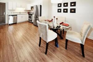 Luxueux appartement à louer à Moncton avec une chambre