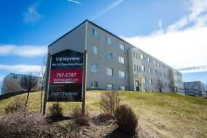 Valleyview Apartments - 3 Bedrooms Apartment for Rent