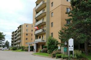 Bright & spacious LARGE 2 bedroom Brantford apartment for rent