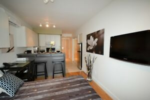 Outstanding 1 1/2 furnished