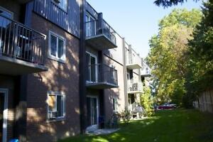 Bright, large windows: 1 bedroom Strathroy apartment for rent