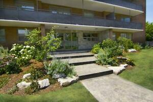 *STUNNING* Sarnia 1 Bedroom Apartment for Rent: Great location!