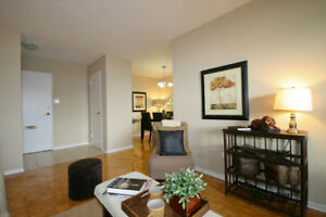 Dixie Square Apartments - Two Bedroom Apartment for Rent