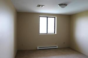 NEED SPACE?  Spacious 2 Bedroom Apartment for Rent in Kingston