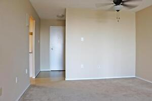 1 Bedroom Apartment for Rent in Brantford, Lynden Park Mall area