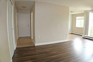 Great for Professionals! 1 Bedroom Apartment for Rent in Sarnia