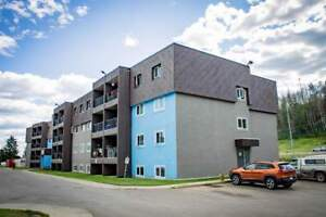 Continental Court - Bachelor Apartment for Rent