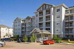 Small Dog Friendly One Bedroom Suites $1450