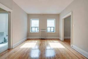 Tall Bachelor Apartment for Rent - 262 Jarvis Street