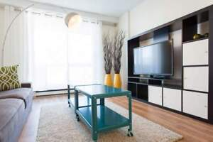 Two Bedroom/Two Bathroom For Rent at FARO - 1825 Ste Rose Street