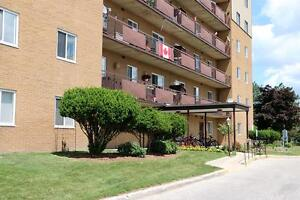 Sarnia 3 bedroom apartment for rent near schools AND shopping!