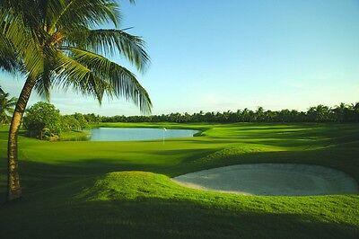 Surfanddunes Com Travel Resort Vacation Domain Beach Hotel Booking Tourism  40K