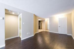 Renovated 2 bedroom PREMIUM Apartment for Rent Sault Ste Marie