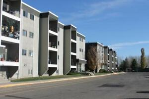 Princeton Place - 1 Bedroom Apartment for Rent
