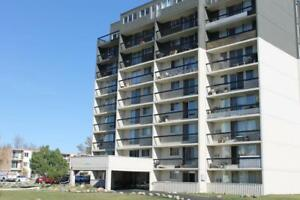 Cumberland Towers - 1 Bedroom Apartment for Rent