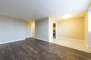 Stunning kitchen! 2 Bedroom Sault Ste Marie Apartment for Rent