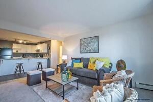 Edmonton 2 Bedroom Apartment for Rent in Hollick Kenyon Edmonton Edmonton Area image 15
