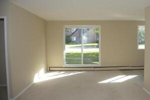Strathroy 2 Bedroom Apartment for Rent: Balcony, large closets London Ontario image 3