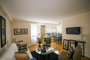 1 Bedroom - Downtown Living - Newly Renovated - Spacious Suites!