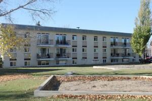 Scenic Heights  - 2 Bedroom Apartment for Rent