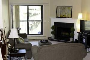 Broadview Meadows Apartments - 1 Bedroom Apartment for Rent...