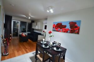 Immaculate 3 1/2 furnished in the heart of the Plateau