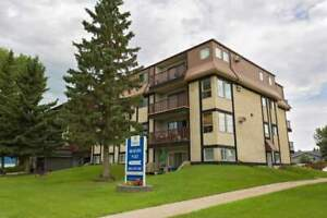 🏠 Apartments & Condos for Sale or Rent in Red Deer   Kijiji