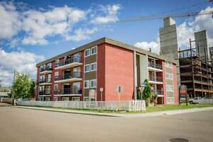 Manning Place - Bachelor Apartment for Rent