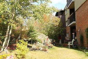 UTILITIES INCLUDED! Quiet Timmins 1 Bedroom Apartment for Rent