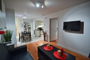 Immaculate 3 ½ furnished in the heart of the Plateau