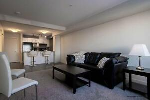 Edmonton 2 Bedroom Apartment for Rent in Hollick Kenyon Edmonton Edmonton Area image 6