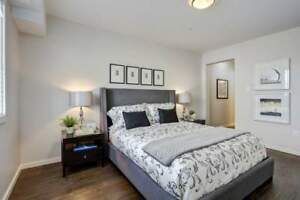 Vista   1 Bed Executive Apartment For Rent