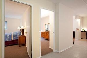 SUPERBE appartement 3 chambres à louer à Hull : Gatineau, QC!