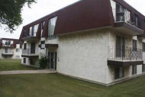 1 Bedroom -  - Viking Apartments - Apartment for Rent Camrose