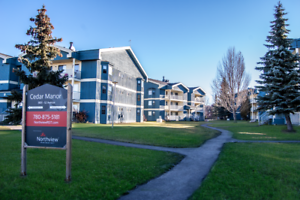 Cedar Manor - 2 Bedrooms Apartment for Rent