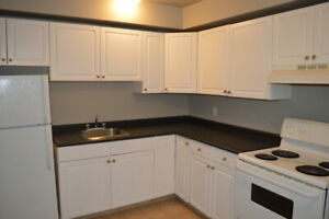 Downtown Apartment For Rent | 2155 Rose Street