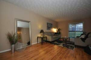 9-54 Paige Plaza - 3 Bedroom Apartment for Rent
