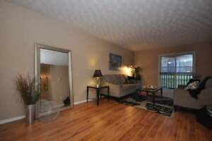 9-54 Paige Plaza - Bachelor Apartment for Rent