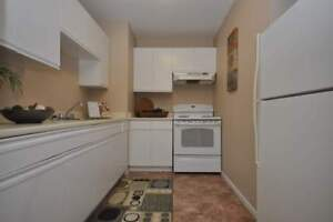 9-54 Paige Plaza - 2 Bedroom Apartment for Rent