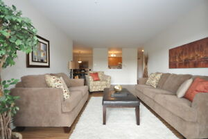 Large, Updated 2BR in Clayton Park! Dog Friendly