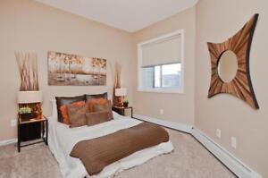 2 Bedroom for Rent - Pet Friendly - Downtown Edmonton