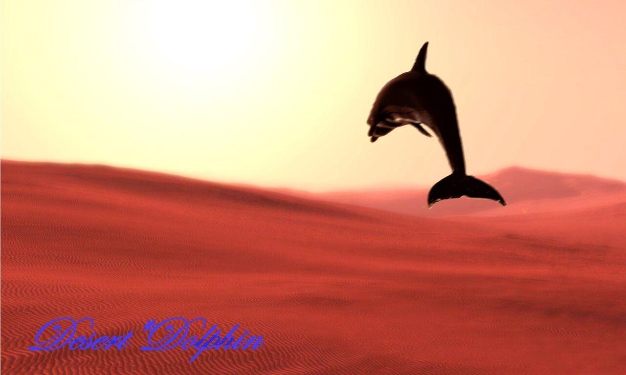 Desert*Dolphin Steampunk