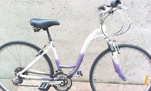 Hybrid Ladies bike 21 Spd, lightweight Alloy frame ready to ride. Paddington Brisbane North West Preview